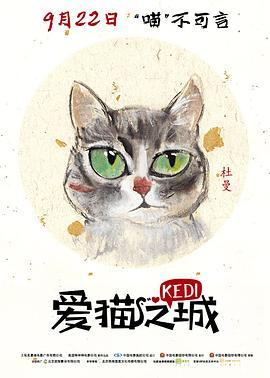 爱猫之城 土耳其版